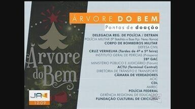 Campanha 'Árvore do Bem' arrecada doações para entidades beneficentes - Campanha 'Árvore do Bem' arrecada doações para entidades beneficentes