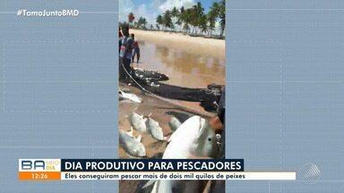 Mais de dois mil quilos de peixe xaréu foram pescados somente quarta, em Maraú - Pescadores comemoram dia produtivo na região sul do estado.