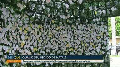 Moradores colam bilhetes com pedidos em árvore gigante de Natal em Umuarama - Árvore foi montada na Praça Hênio Romagnoli.