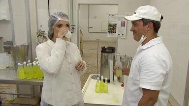 Em Juiz de Fora, pesquisadores da Epamig criam 'kefirgerante' - Bebida fermentada a base de soro do leite é criada em laboratório na Zona da Mata.