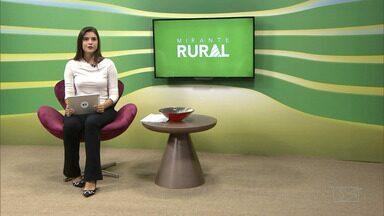 Mirante Rural - íntegra do dia 15/12/2019 - Confira o programa completo.