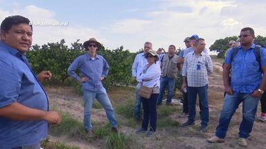 Parte 2: Em Boa Vista, produtores compartilham conhecimentos para aumentar produtividade - Encontro busca alternativas para alavancar economia do setor.