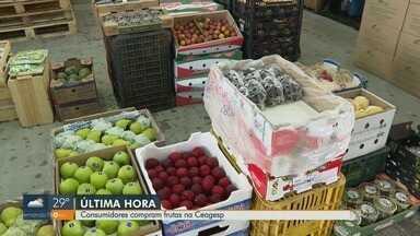Consumidores compram frutas para a ceia de Natal em Ribeirão Preto, SP - Segundo Ceagesp, uva, ameixa, abacaxi e pêssego são as mais consumidas nessa época do ano.