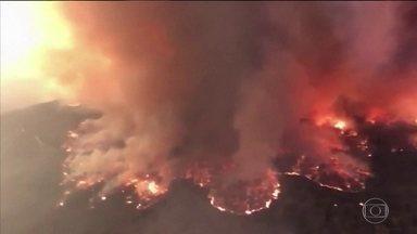 Condições climáticas agravam incêndios na Austrália - Estado de Nova Gales do Sul decretou emergência. Temperatura alta e vento forte espalham incêndios que já mataram 18 pessoas.