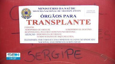 Conheça a importância de comunicar à família sobre desejo de doar órgãos - Conheça a importância de comunicar à família sobre desejo de doar órgãos.
