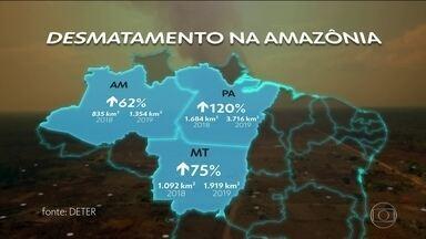 Inpe diz que alertas de desmatamento na Amazônia Legal quase dobraram em um ano - De janeiro a dezembro de 2019, áreas derrubadas na Amazônia somaram nove mil quilômetros quadrados, um aumento de 85% em relação a 2018.
