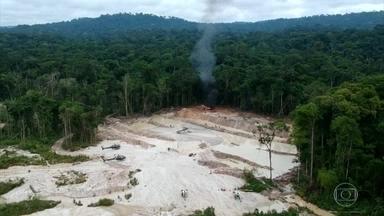 Alertas de desmatamento na Amazônia Legal aumentam 85% em 2019 - O balanço dos alertas de desmatamento são feitos pelo Inpe. É o pior resultado desde 2015.