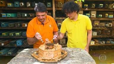 Ezequiel e Manfrinni disputam prêmio do 'The Wall' - Dupla quer conseguir dinheiro para ampliar o projeto 'Fábrica de Abelhas'