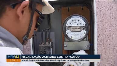 """Copel faz fiscalização contra """"gatos"""" - Copel flagra por dia 43 ligações irregulares de energia no Paraná."""