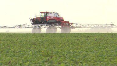 Prazo para o plantio da soja no oeste do estado termina na segunda-feira - Período é determinado pela ADAB.