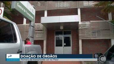 Número de transplantes de órgãos cai no Piauí - Número de transplantes de órgãos cai no Piauí