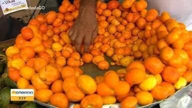 Consumidores se apressam para comprar pequi em fim de temporada, em Goiânia - Economista tem estoque do fruto na geladeira suficiente para consumir durante todo o ano.