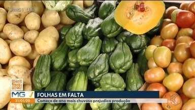 MG1 mostra qualidade dos alimentos em feira de Uberlândia durante período chuvoso - Comerciantes relatam que produção e qualidade de alguns produtos caíram, já que o clima interfere na colheita.