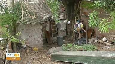 Corumbá registra 98 caos confirmados para dengue me janeiro - Secretaria de saúde do município intensifica mutirões de limpeza nos bairros