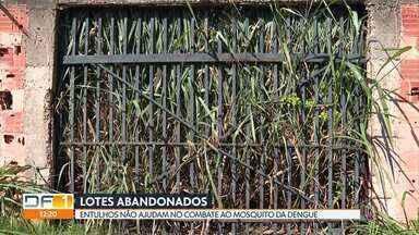 Lotes abandonados pelo DF se tornam criadouro do mosquito Aedes aegypti - Denúncias de mato alto, acúmulo de lixo e incidência do mosquito devem ser feitas na Ouvidoria do GDF, no número 162.