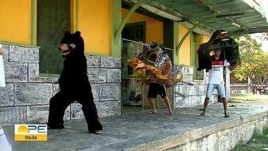 Ursos e bois preparam desfiles para o carnaval em Arcoverde - Folia no Sertão é comandada por essas agremiações.
