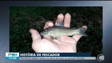 Moradores da Zona Norte peam peixes na porta de casa após chuvas - Moradores da Zona Norte peam peixes na porta de casa após chuvas