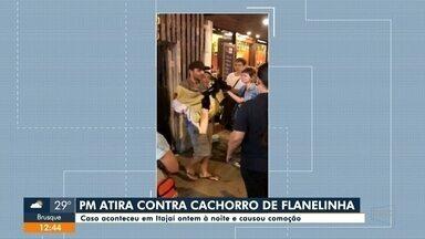 Policial Militar atira contra cachorro de flanelinha em Itajaí - Policial Militar atira contra cachorro de flanelinha em Itajaí