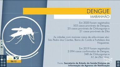 Maranhão está entre os estados com surto de dengue no Brasil - Secretaria de Estado da Saúde (SES) informa que, até o momento, 503 casos prováveis de Dengue, 25 casos prováveis de Chikungunya e 21 casos prováveis de Zika foram notificados no Maranhão em 2020.