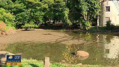 Ação para melhorar a qualidade da água do lago do Parque Moinhos de Vento inicia hoje - Lago está com acúmulo de lama.