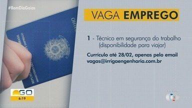 Confira as vagas de emprego para Goiás - Empresa contrata técnico de segurança do trabalho com disponibilidade para viajar.