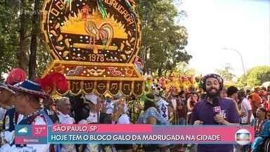 Galo da Madrugada desfila em São Paulo pela primeira vez - Tradicional bloco do Recife estreia na terra da garoa e anima foliões