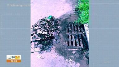 Morador denuncia falta de limpeza em ruas da quadra 605 Sul - Morador denuncia falta de limpeza em ruas da quadra 605 Sul