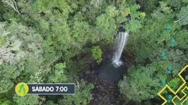 'Partiu Amazônia' revive viagem até Ouro Preto do Oeste-RO - 'Partiu Amazônia' revive viagem até Ouro Preto do Oeste-RO