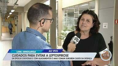Confira cuidados para evitar a leptospirose - Em épocas chuvosas e com alagamentos é mais comum surgirem casos da doença.