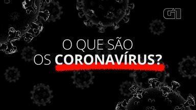 Coronavírus: o que são e qual o tempo de incubação deles? - Série especial do G1 tira as principais dúvidas sobre a doença.