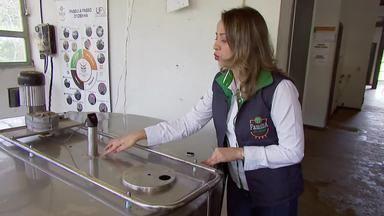 UFV estuda tecnologia que pode modernizar cadeia produtiva do leite - Programa de extensão atende produtores de Viçosa e região.