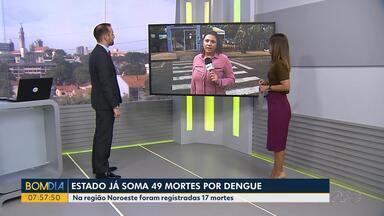 Paraná já soma 47 mortes por dengue - 17 mortes foram registradas apenas no Noroeste.