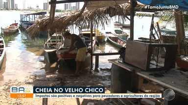 Velho Chico vive a maior cheia dos últimos 12 anos e trabalhadores sofrem com coronavírus - Os impactos são positivos e negativos para pescadores e agricultores da região.