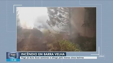 Incêndio atinge área de mata em Barra Velha - Incêndio atinge área de mata em Barra Velha