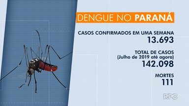Paraná registra 111 mortes por dengue - Em Cascavel, três pessoas morreram.