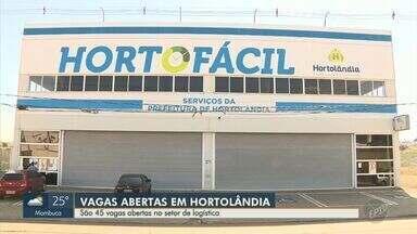PAT de Hortolândia divulga 45 vagas de emprego nesta segunda - As oportunidades são para conferente de logística, auxiliar de logística e auxiliar operacional de logística.