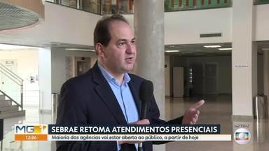 Agências do Sebrae Minas retomam atendimento presencial - Mais da metade das agências estarão abertas ao público a partir de hoje.
