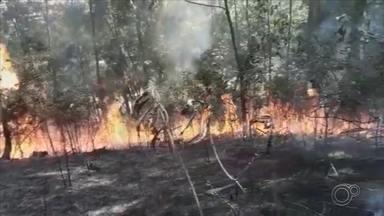 Defesa Civil de Várzea Paulista atendeu mais de 60 ocorrências de incêndio em um mês - Há um mês sem chuvas e com o tempo seco, as queimadas voltam a aparecer em grande quantidade.