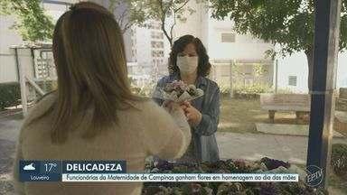 Funcionárias da Maternidade de Campinas ganham flores em homenagem ao Dia das Mães - Hospital tem cerca de 800 médicas e enfermeiras, além de outras funcionárias. Produtores de Holambra (SP) doaram as violetas entregues às mulheres.