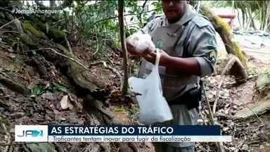 Polícia apreende drogas em vários lugares inusitados durante abordagens - Drogas foram apreendidas em várias cidades de Goiás.