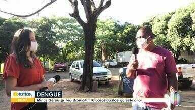 Montes Claros têm 58 casos prováveis de dengue em 2020 - Mesmo em meio a pandemia é preciso ficar atento aos locais que podem gerar proliferação do mosquito.