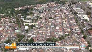 Número de casos de dengue no Cruzeiro já é 4 vezes maior do que no ano passado - Em outra região, Candangolândia, o crescimento foi de 21% em apenas uma semana.