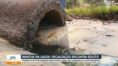 Fiscalização identifica esgoto da Casan como motivo para mancha na Lagoa da Conceição - Fiscalização identifica esgoto da Casan como motivo para mancha na Lagoa da Conceição