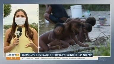 Amazonas tem quase 60% dos casos de Covid-19 entre indígenas do Brasil - Estado tem 452 casos.