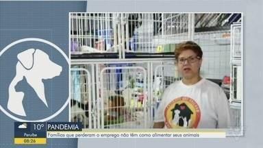 Famílias que perderam o emprego não têm como alimentar seus animais - Angela Bandeira, protetora de Santos, diz que eles precisam de ajuda.