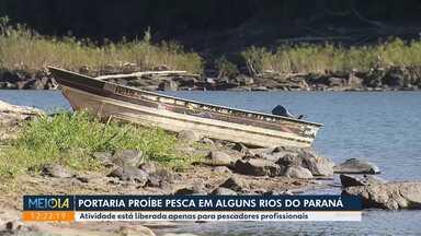 Portaria proíbe pesca em alguns rios do Paraná - Atividade está liberada apenas para pescadores profissionais.