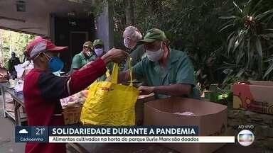 Alimentos de horta do Parque Burle Marx são doados para moradores carentes da capital - Próxima doação será feita no dia 17 de junho. Por causa da pandemia, parque continua fechado.
