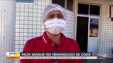 Número de doadores cai no hemonúcleo de Codó - O mais preocupante da queda, é que o município atende inclusive pacientes de Covid-19.