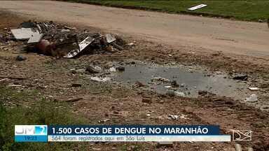 Maranhão registra 1.500 casos de dengue - São Luís concentra um terço de todos os casos de dengue registrados no Maranhão este ano.