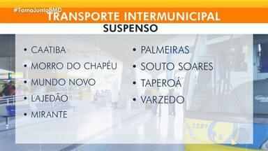 Municípios baianos têm transporte intermunicipal suspenso por causa da Covid-19 - Total chega a 315 cidades sem o transporte.